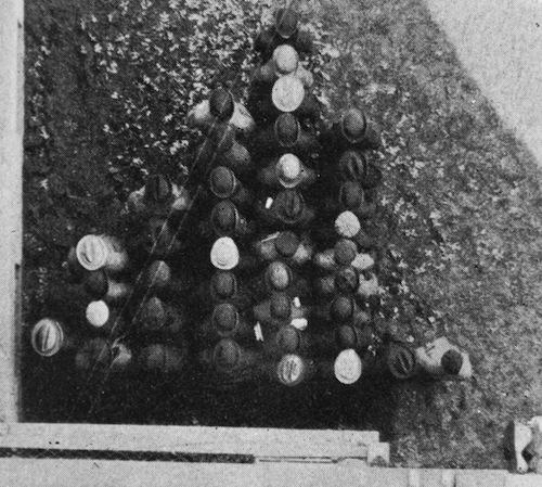 Het oudste levende histogram dat we kennen, uit de tijd dat vrouwen nog niet mochten studeren
